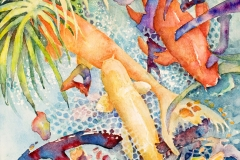 Honorable Mention, Carol Koziol Clark, Cool To Be Koi