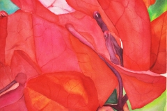 Margaret Martin Award, Vicki OReilly, Paper Flower