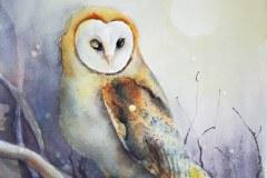 Meier-Debra_owl-and-the-firefly_14x21