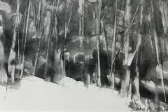 Miller-Susan-M._Woodland-Snowfall_10x5