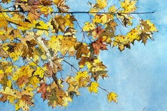 "Leslie Calimeri's Yellow Leaves, 16"" x 20"", $375"