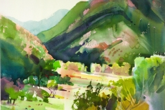 Stephen Quiller- Hawaii 28 x 29Price $800