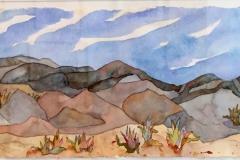Catherine-Skerker.Desert-Patterns