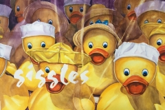 Window-Quacks