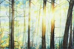 """""""Morning Reboot"""" by Janine Motto, $325"""